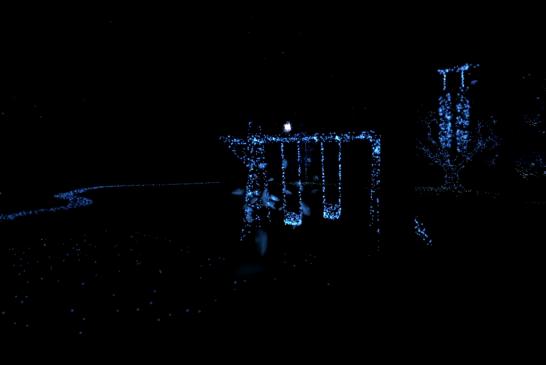 Le Jardin de réalité virtuelle du Centre Phi en visite au Festival Chromatic