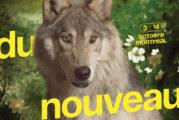 Le 47e Festival du nouveau cinéma (FNC) dévoile sa riche programmation
