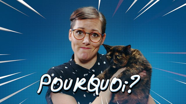 Pourquoi? : la nouvelle websérie scientifique de Télé-Québec