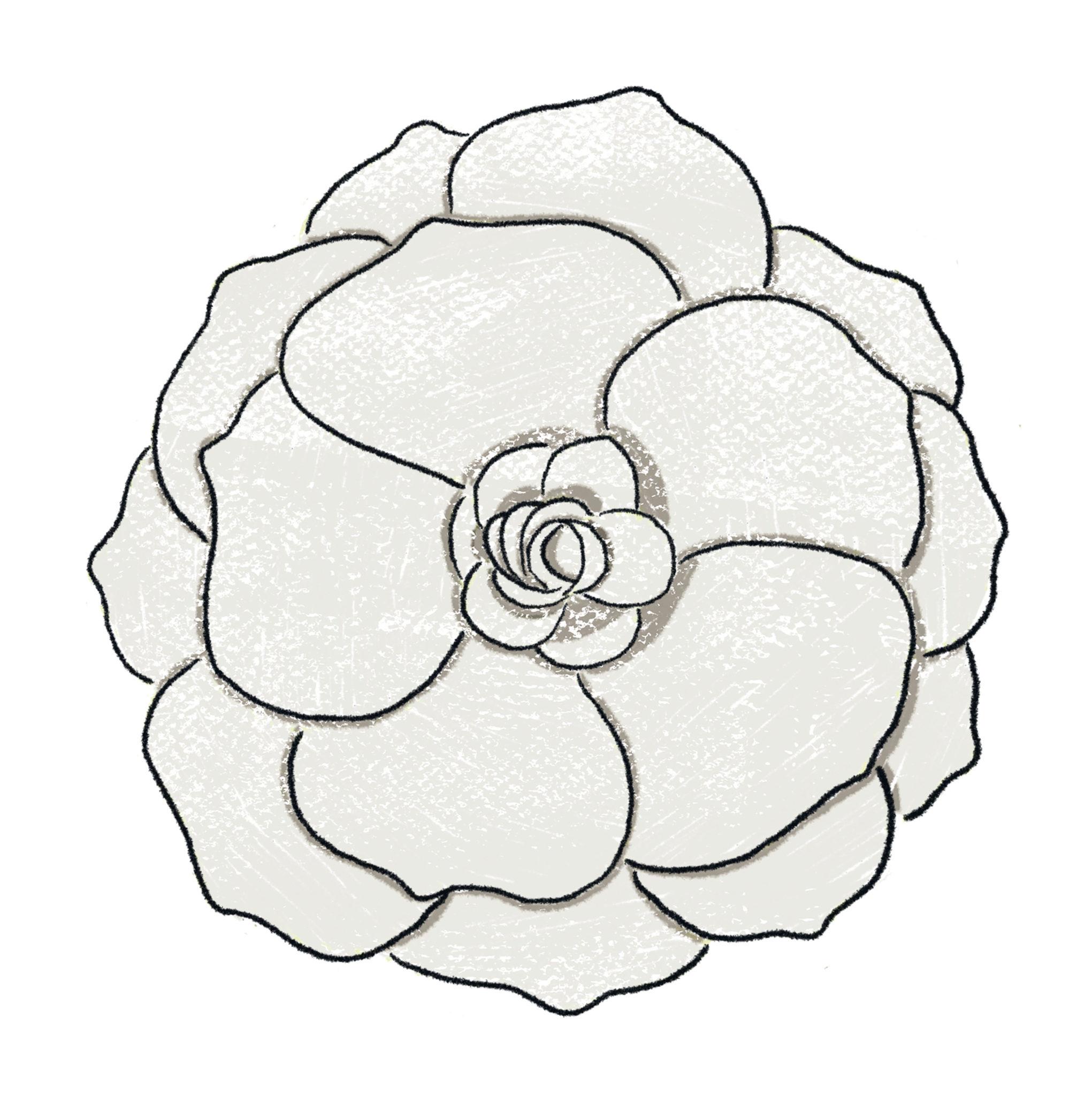 NOUS célèbre l'extraordinaire talent créatif avec une fleur