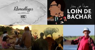 L'ONF aux RVQC 2020 : 17 productions et coproductions sélectionnées