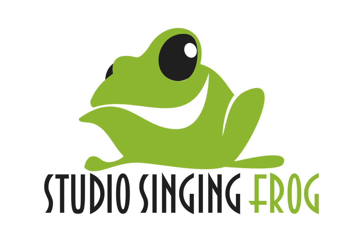 Offre d'emploi | Singing Frog Studio recherche un(e) Directeur(trice) des finances